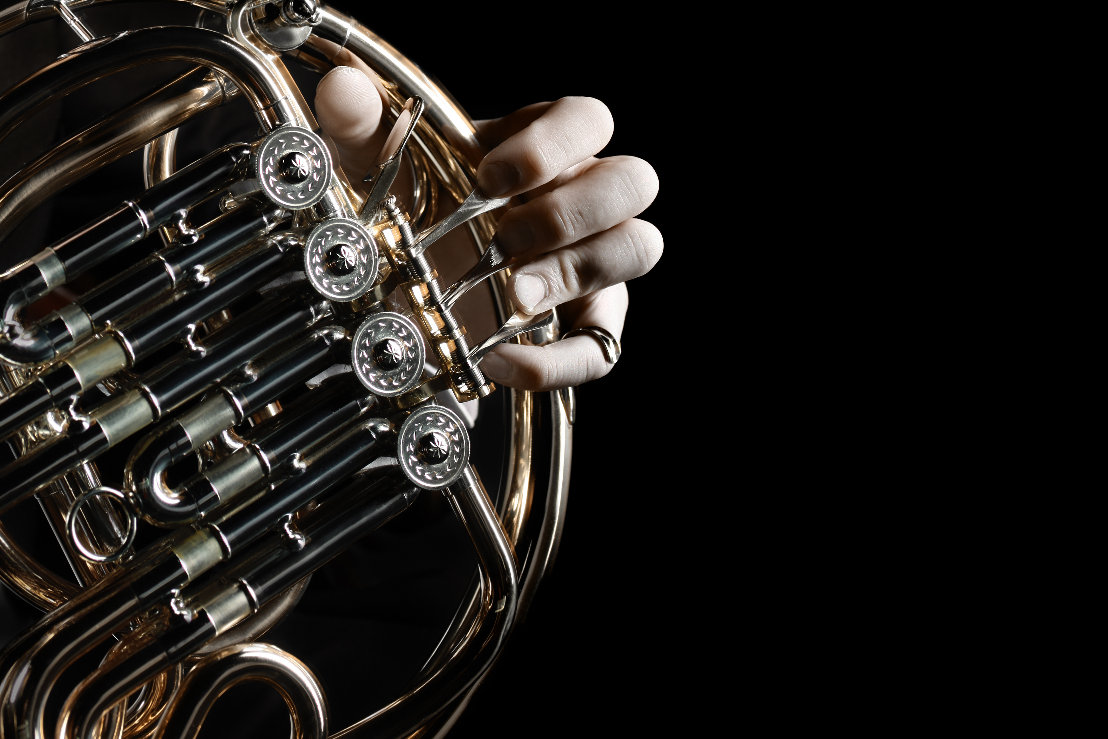 French horn instrument