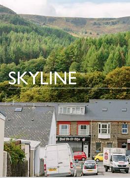 Skyline Report