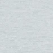 Light Grey 7251