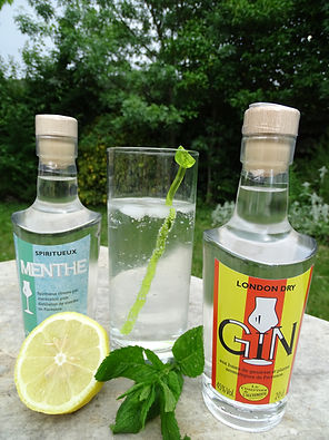 Cocktail Gin menthe