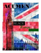 ACUMEN - NOVEMBER 2015 COVER.jpg