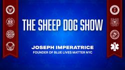 The Sheep Dog Show