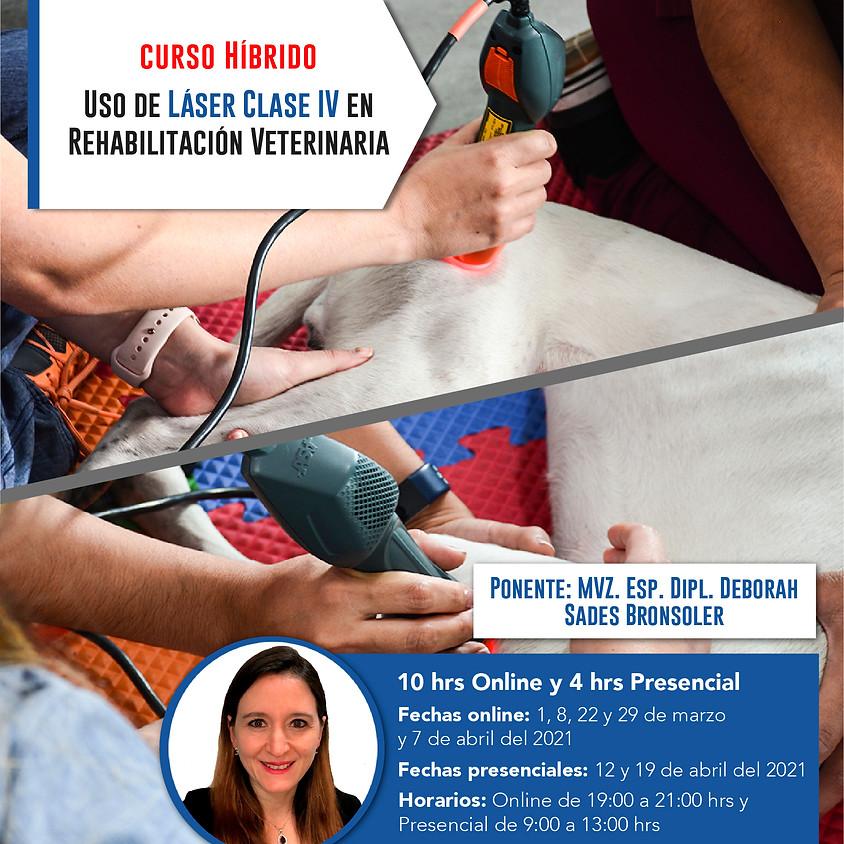 Certificación en el Uso de ASA Láser Clase IV en Rehabilitación Veterinaria.