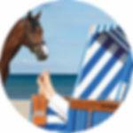 Bild-Pferd-Strandkorb-01-dr.jpg
