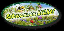 200827-Schwansen-blüht-Logo-03-dr.png