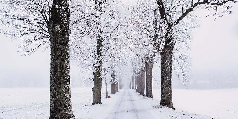 Dialogkonferanse; Smart vintervei