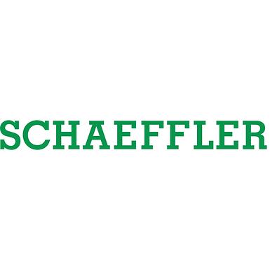 Online Corporate Governance Workshop von Schaeffler