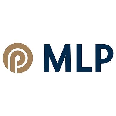 Workshop von MLP