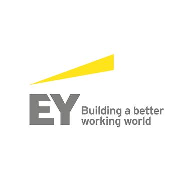 M&A-Workshop von Ernst & Young