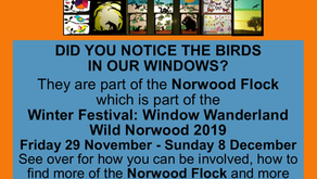 Window Wanderland 29th November - 8th December: