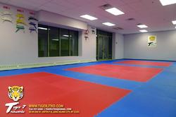 Dojang (Practice Area)