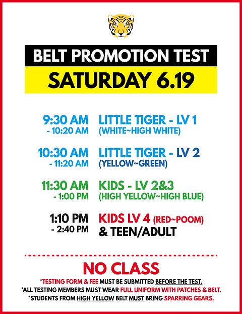 TJT_Belt Test_210619.png