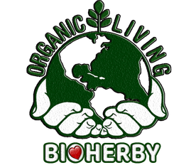 Jiaogulan tee kaufen Onlin Deutschland Bioherby