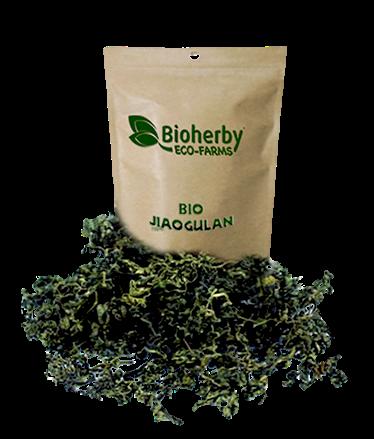 Jiaogulan Tee Bio - 200 Gramm - Bioherby Shop Germany