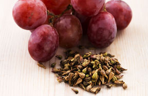 Reservatrol_Bioherby_grape.jpg