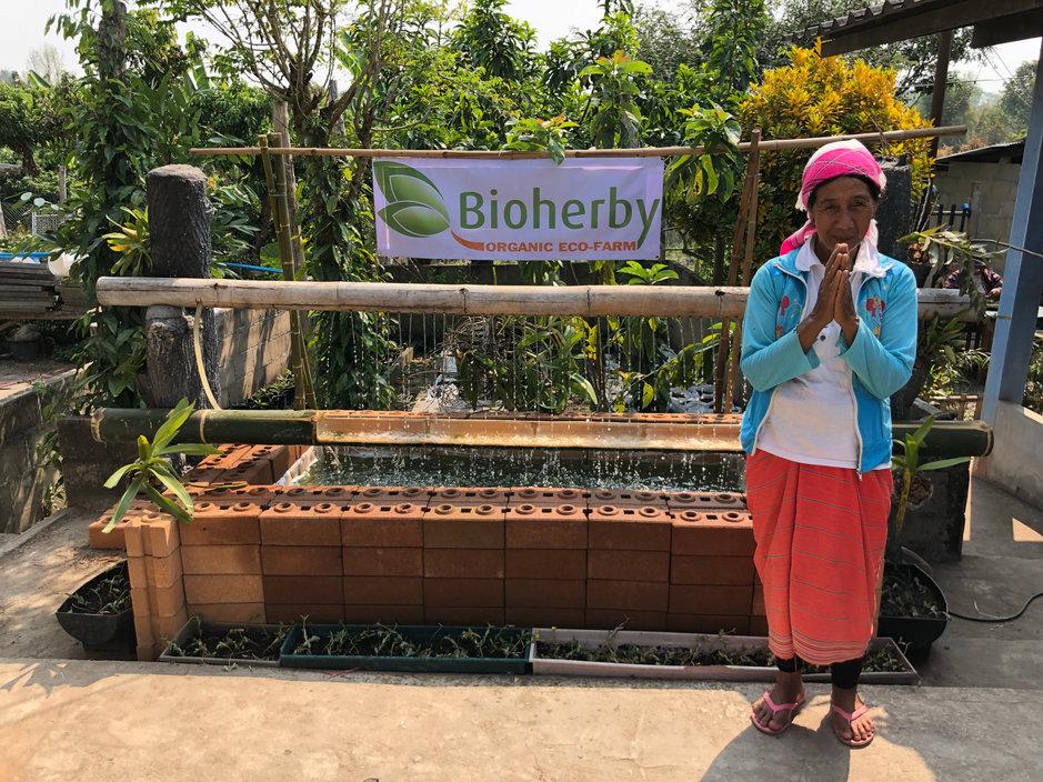 Bio-Tee Anbaugebiete ∞ Bio, Öko, FDA-zertifiziert ∞ Eco-Farm BIOHERBYⓟ