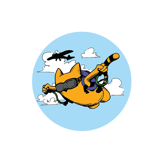 Sky Diving Cat button