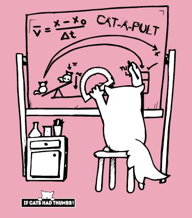 Catapult Cat - women's