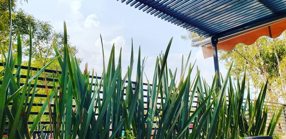 Rooftop 2M arquitectos