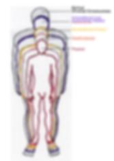 5 bodies of consciousness
