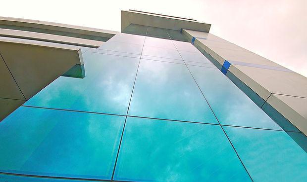 pinas.blue1.jpg
