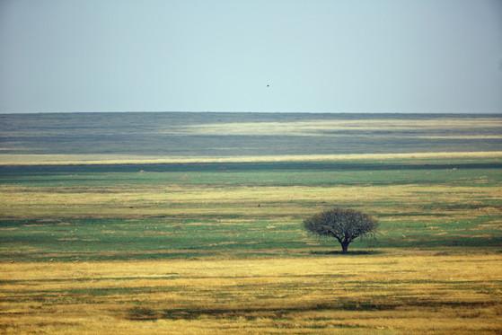 AdrienFavre_paysage_Afrique