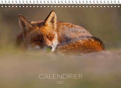 Adrien Favre calendrier 2021