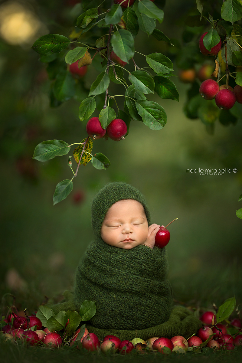 Apple Baby Bunting