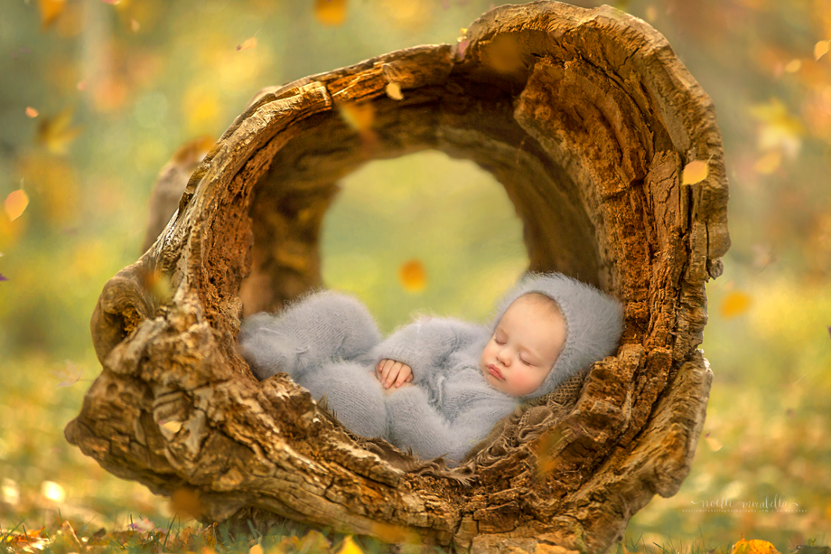 My World | Grande Prairie Baby And Child Photographer | Alberta Photographer