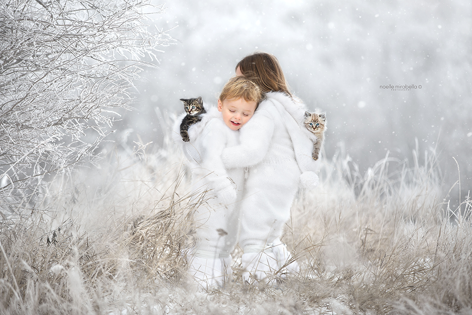 Winter Photography Tips | Grande Prairie Photographer | Alberta Photographer