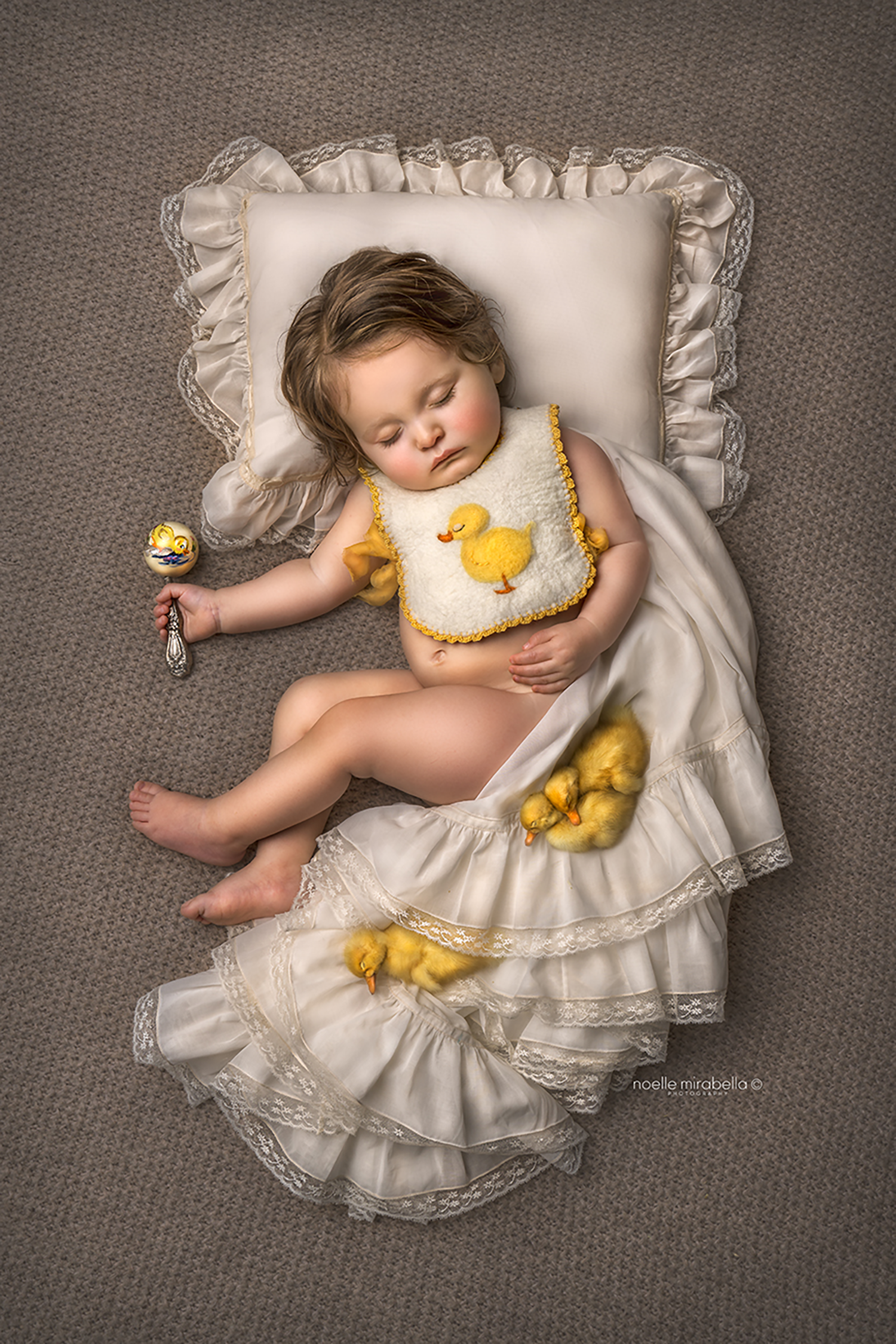 Grande Prairie Photographer, Grande Prairie Newborn Photographer, Grande Prairie Family Photographer