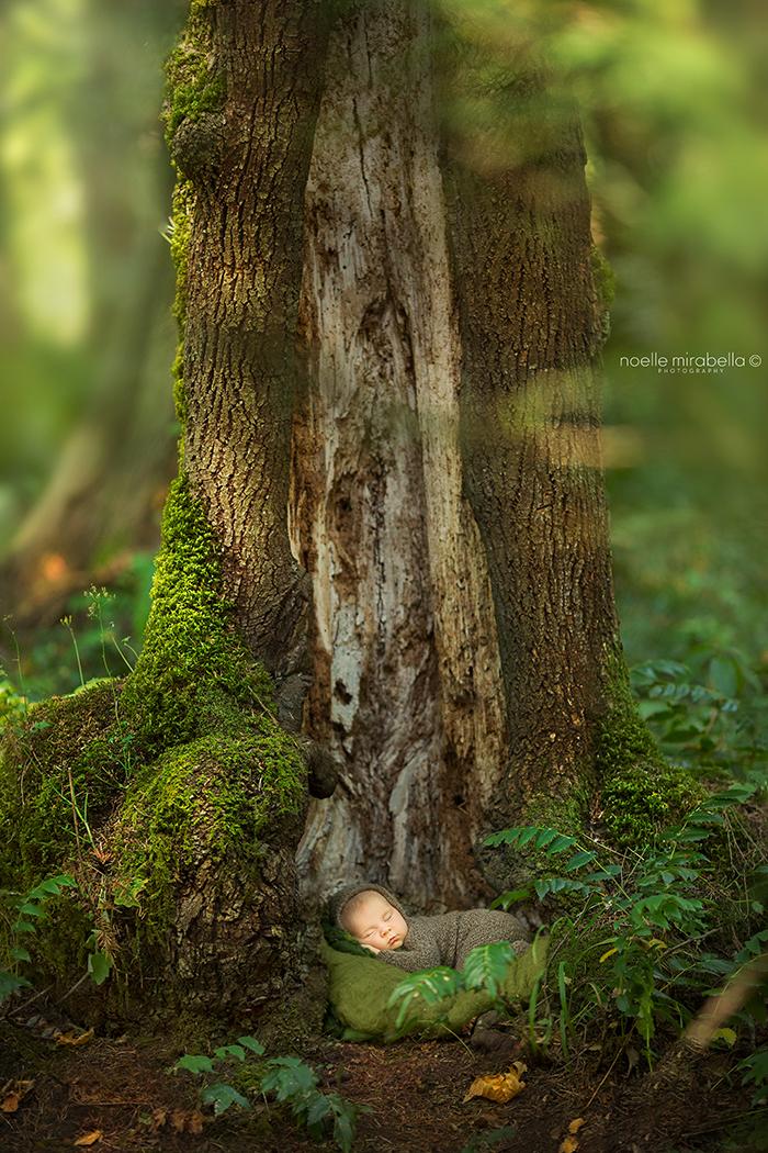 Neverland Project: Victoria BC | Victoria Photographer | BC Photographer