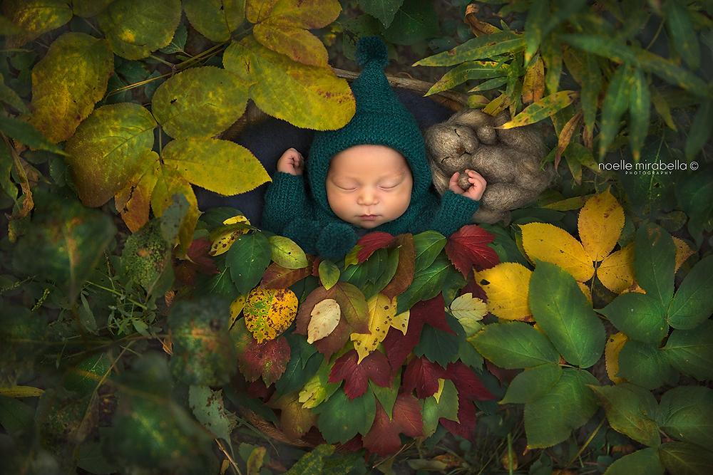 Grande Prairie Photographer, Grande Prairie Newborn Photographer