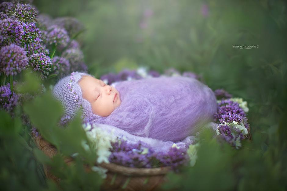 Outdoor Newborn Photography | Grande Prairie Newborn Photographer | Alberta Photographer