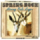 spring bock strong lager