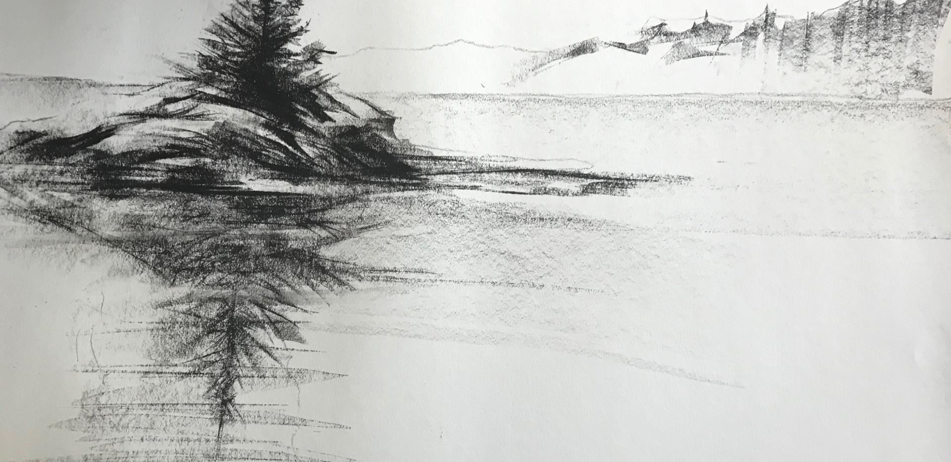 Fish Hawk Island