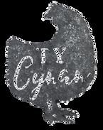 Logo - Transparent Writing.png