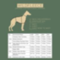 WildFleece Size Chart.jpg
