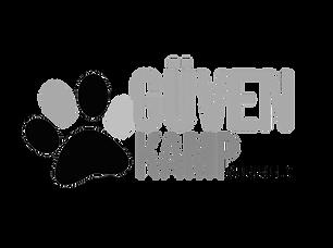 LOGO GVN_2.png