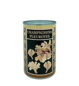 Champignons Pleurotes .jpg