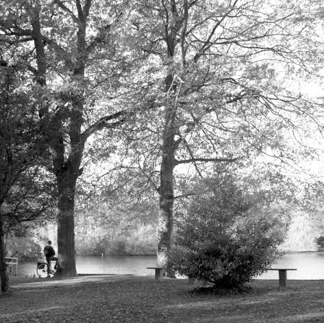 Hartsholme Park, Lincoln