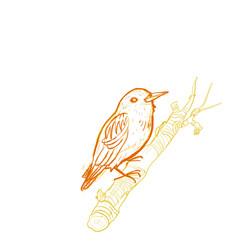 branchbird