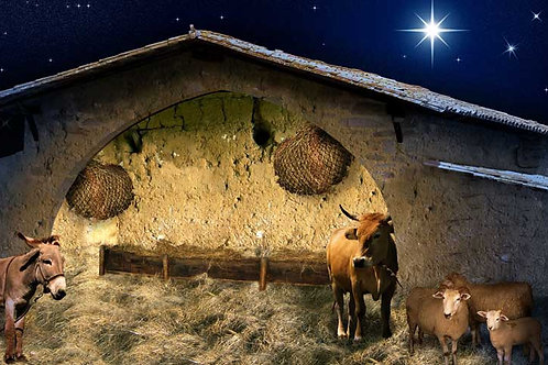 Nativity Stable backdrop - large 175 x 96cm