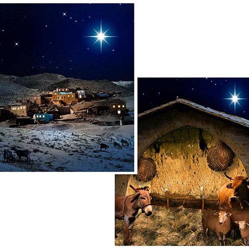 Christmas Nativity Backdrops - small 86 x 96cm