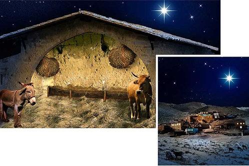 Christmas Nativity Backdrops - medium
