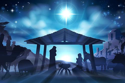 Christmas Nativity backdrop 3
