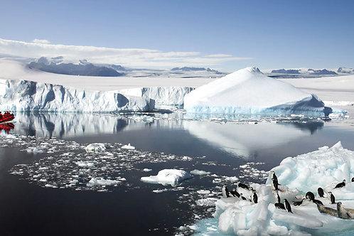 Antarctic Scene Bespoke Backdrop
