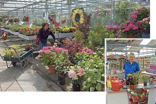 Garden Centre Scene Setters - medium
