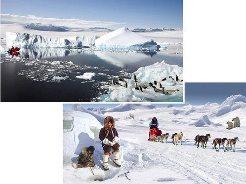 Polar Backdrops - large