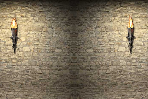 Dungeon Wall Backdrop